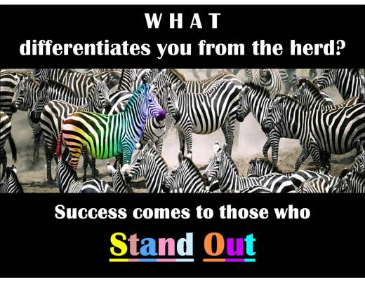 Zebra - Stand Out